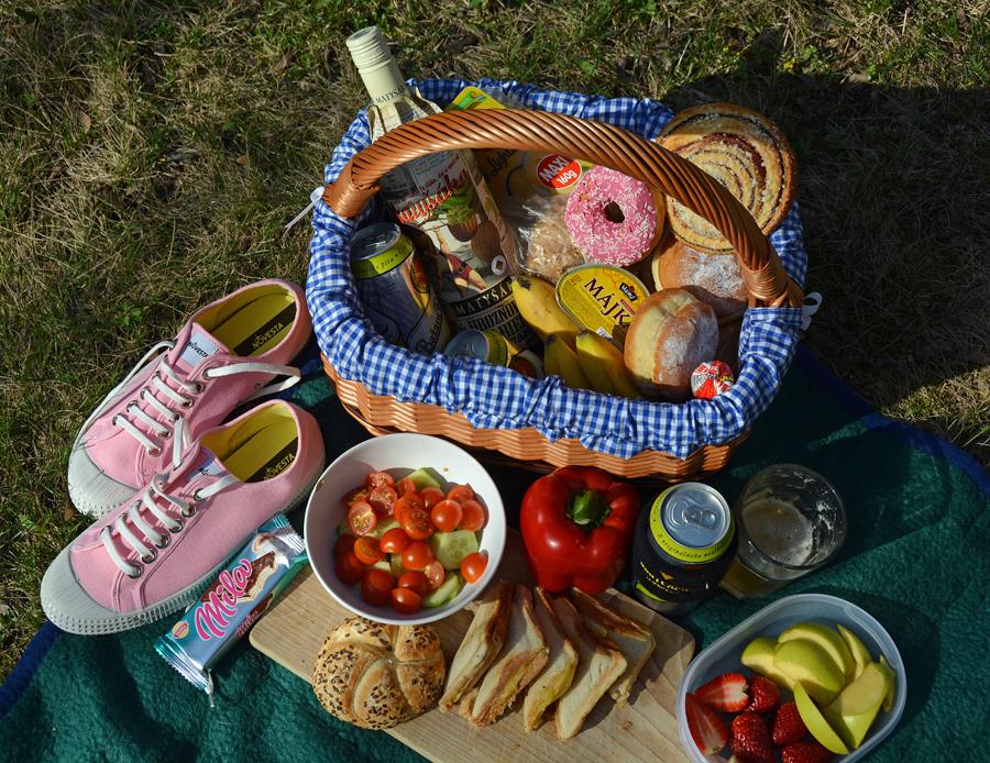 spring-picnic-janatini-novesta-2