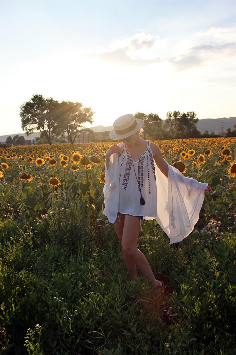 sunflowers-janatini-jana-tomas-1