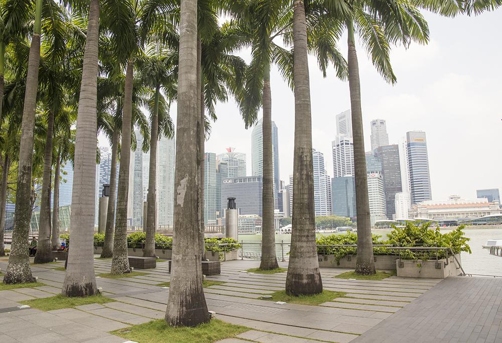 singapore-snapshots-janatini-3