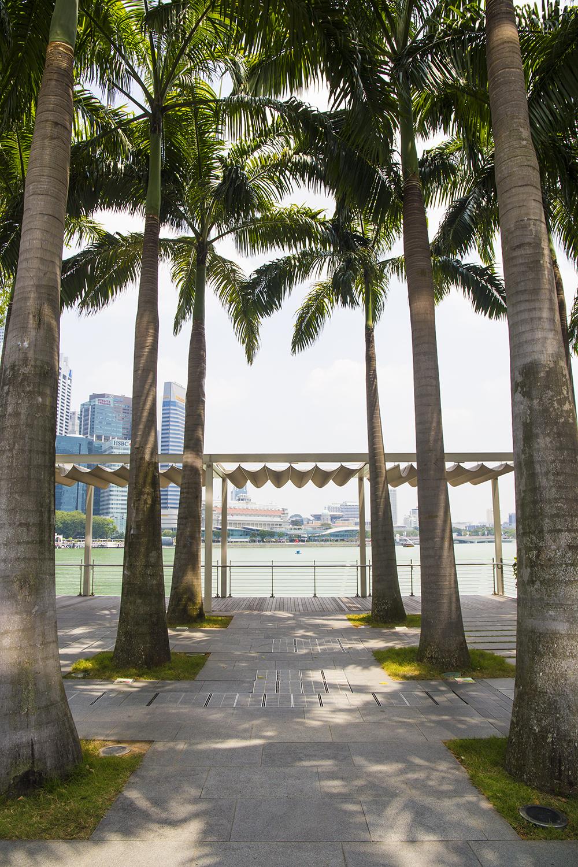 singapore-snapshots-janatini-8
